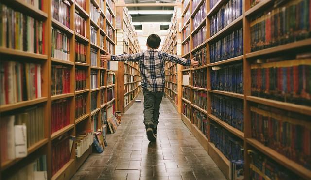 Wohin Mit Alten Büchern wohin mit alten büchern bärentanz